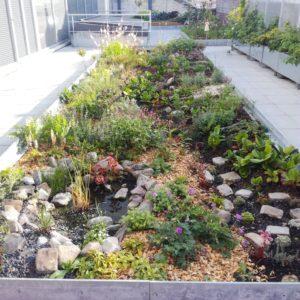 Jardin sur toit